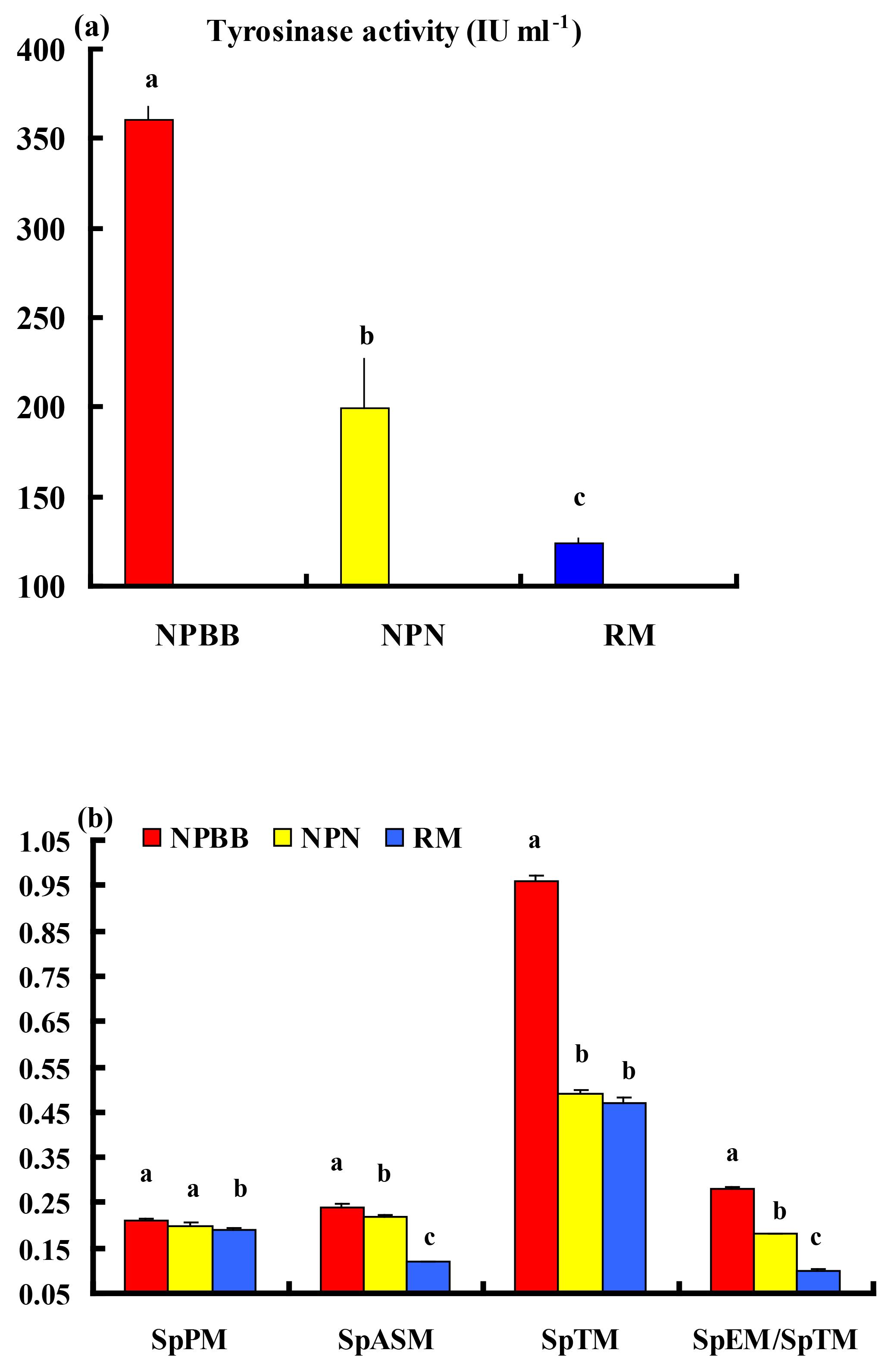 AAB - An examination of melanogenic traits and TYRP1